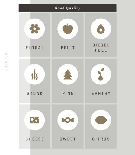 stats-icons-taste